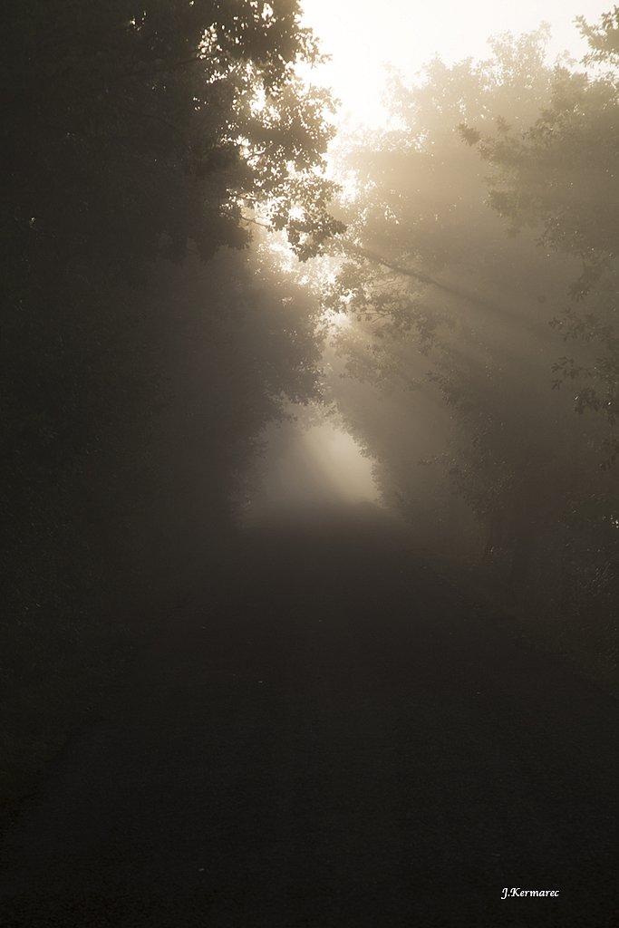 Sur la route embrumée